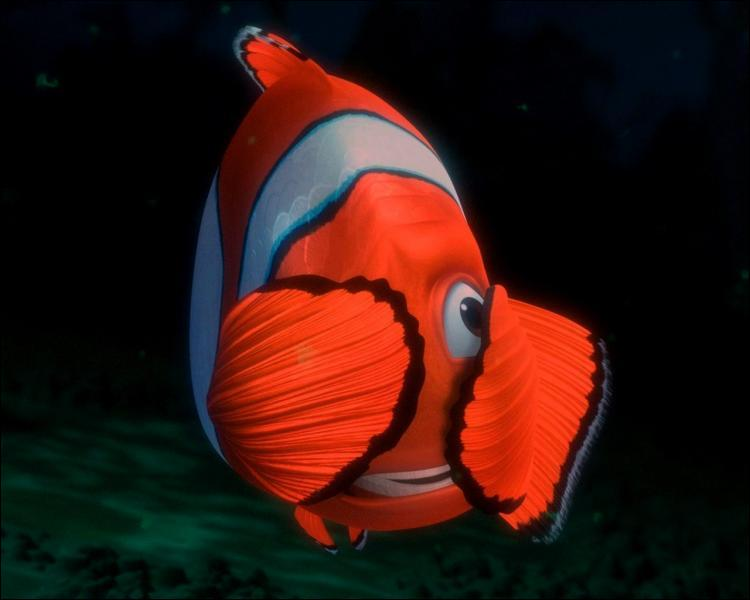 (Le monde de Némo)  Quel espèce de poisson est Némo ?