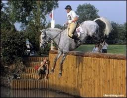 Equitation - Obstacles de cross