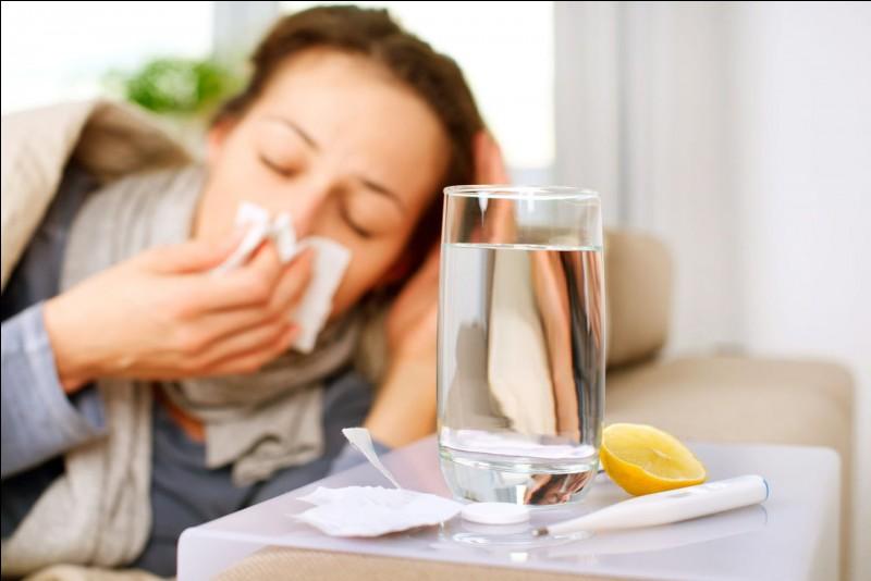 Santé : Quelle maladie, autre que le rhume, fait des épidémies l'hiver ?
