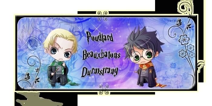 Es-tu à Poudlard, à Beauxbâtons ou à Durmstrang ?