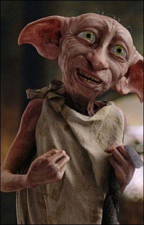 Comment s'appelle l'association pour les elfes de maison d'Hermione ?