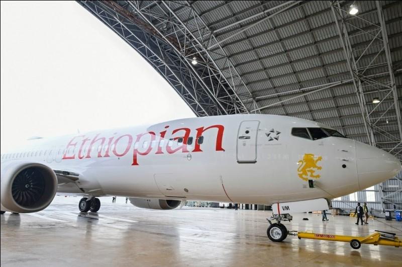 De quelle compagnie aérienne appartient cet avion ?