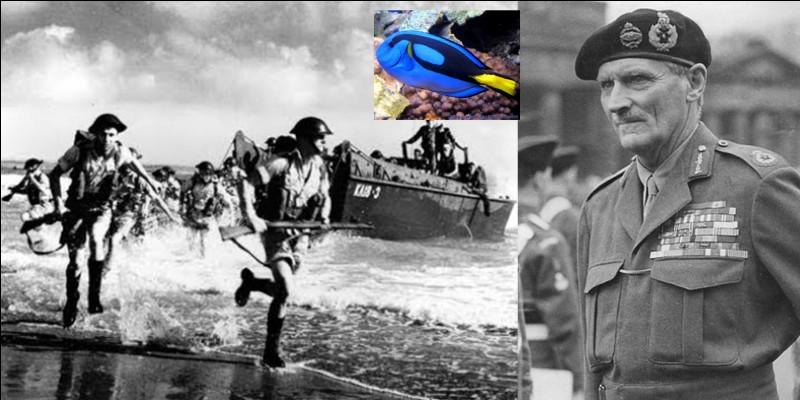 Parlons du nom des plages du Débarquement en Normandie. C'est le général Montgomery qui choisit le nom des trois plages choisies comme point de débarquement pour les Anglo-Canadiens.Comment choisit-il ces noms (et indicatifs) ?