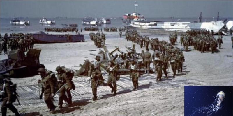 Continuons à parler du choix des noms des plages du Débarquement en Normandie. Le nom d'une des plages n'a pas plu au Premier ministre, Winston Churchill. Il exigea son changement considérant que ce nom ne devait pas entrer dans l'histoire !Quelle est cette plage ?Quelle en est la raison ?