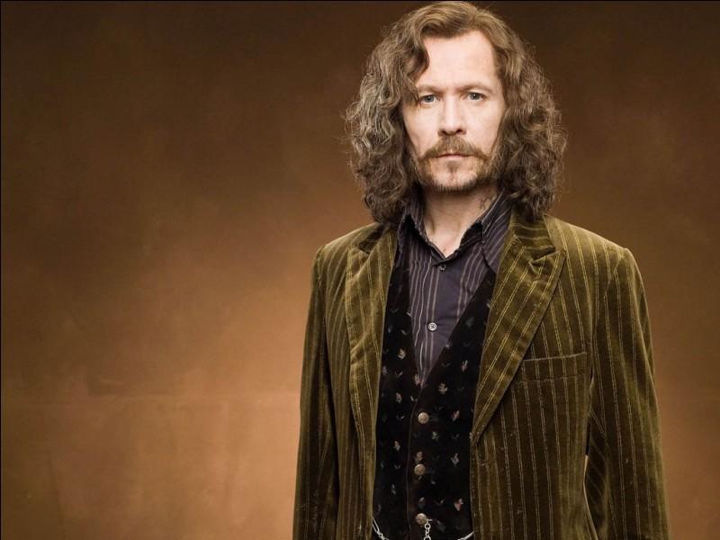 La baguette de Sirius Black est faite en bois de houx avec un ventricule de dragon, et mesure 23 cm.