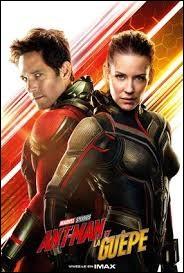 Ant-Man fait équipe avec la Guêpe