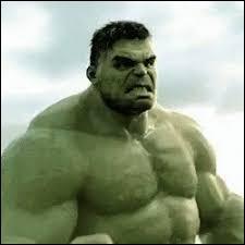 Le nom de Hulk est Brice Banner