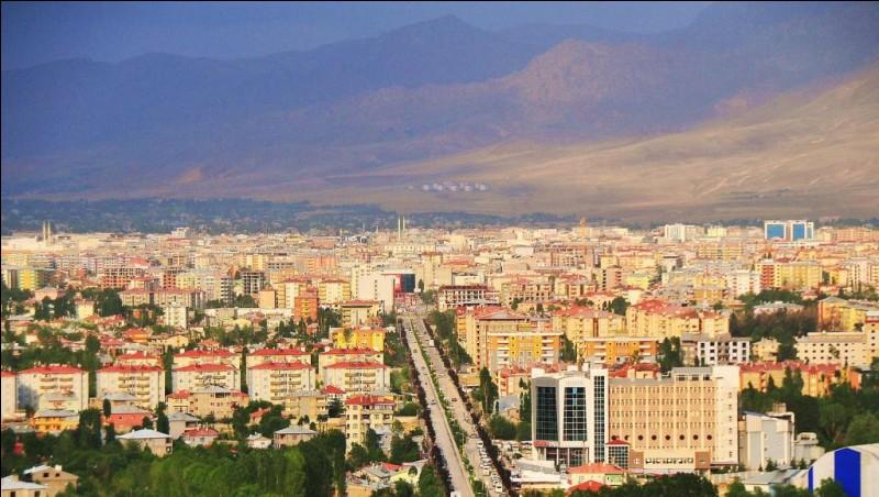 Ville du sud-est de la Turquie, située en bordure du grand lac du même nom :