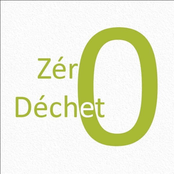 """Quelle ville vise le """"zéro déchet"""" à l'horizon 2020 (c'est demain) ?"""