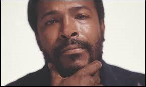 Comment est mort Marvin Gaye, l'interprète de ''Sexual Healing'' ?