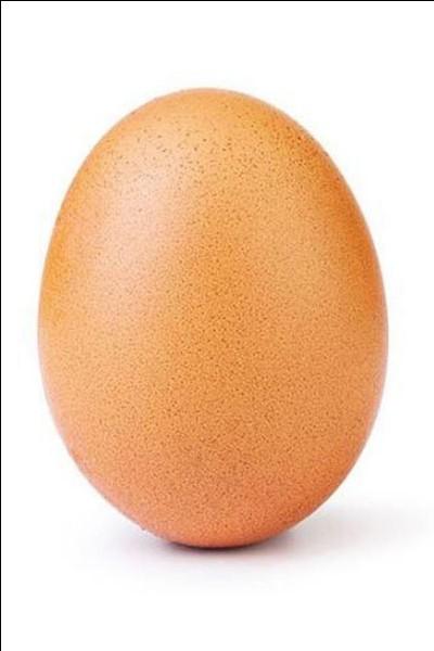 Quel dessert laitier épaissi à l'œuf est un fluide non-newtonien, qui devient plus dur lorsqu'on exerce une pression dessus ?