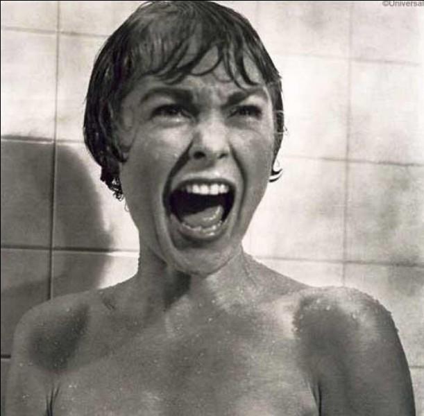 On peut voir la célèbre séquence du meurtre sous la douche dans le film d'Alfred Hitchcock...
