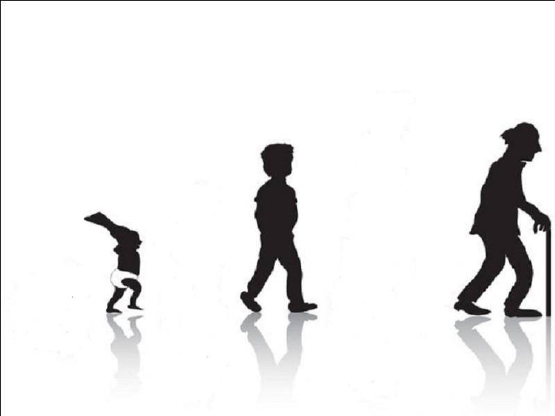 À quelle période de la vie correspond l'âge bête ?