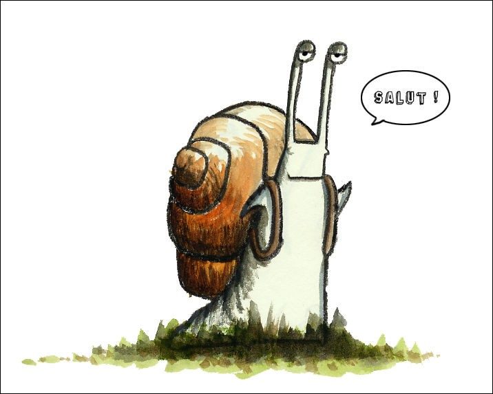 """""""Bête à cornes'' est un des surnoms de l'escargot. Quel est le nom de l'élevage des escargots comestibles ?"""