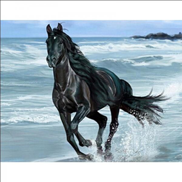 De quelle couleur est le cheval blanc d'Henri IV ?