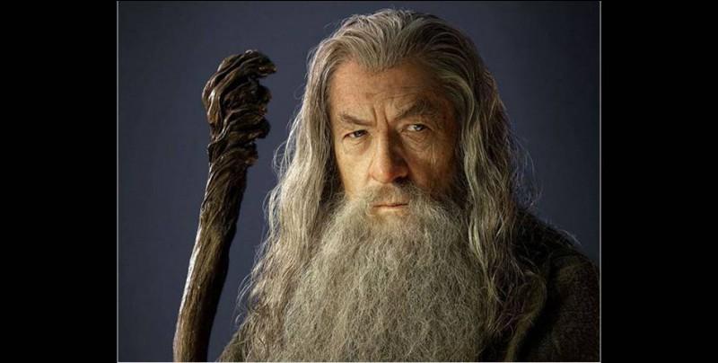 Comment s'appelle ce sorcier très connu ?