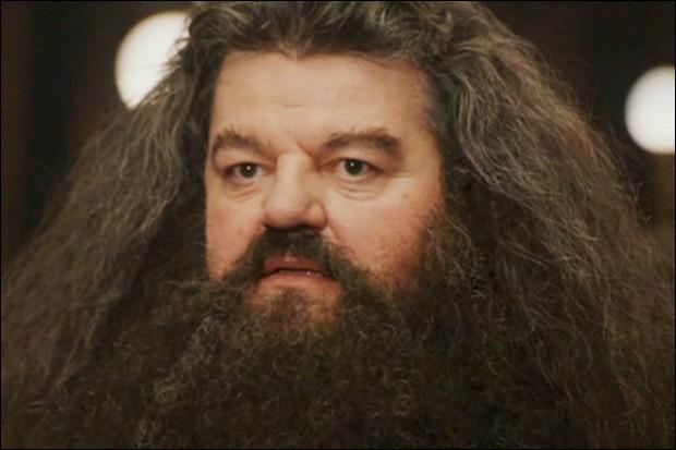 Quel est le premier cadeau que Hagrid a offert à Harry ?