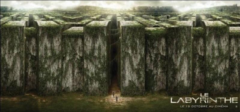 Quel personnage de 'Labyrinthe' es-tu ?