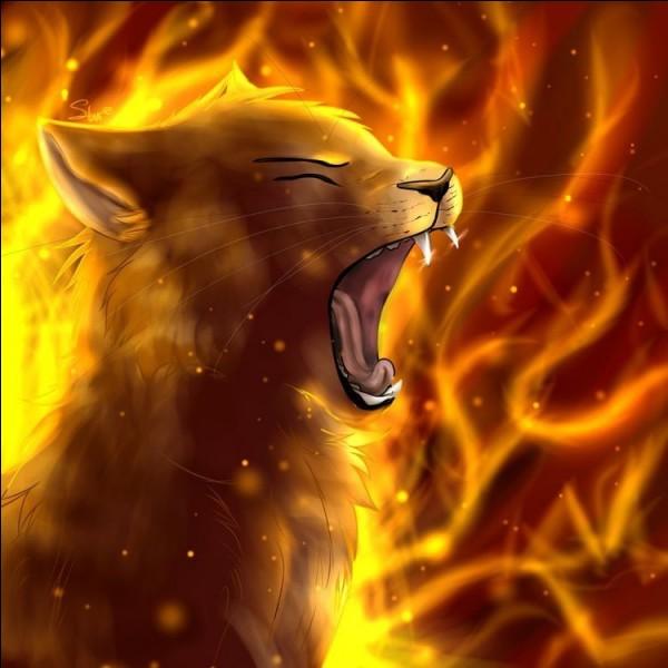 T4 : comment Cœur de Feu a-t-il su qu'un incendie était en train de ravager le Clan ?