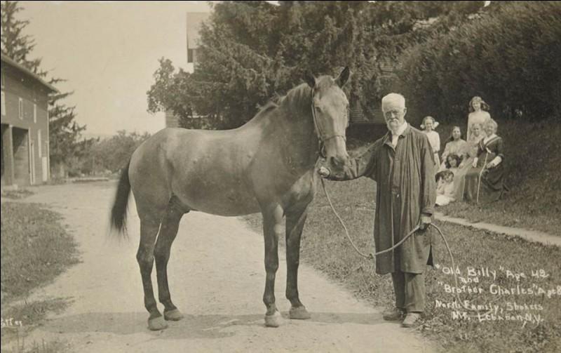A quel âge Old Billy, le cheval le plus vieux du monde, est-il mort ?