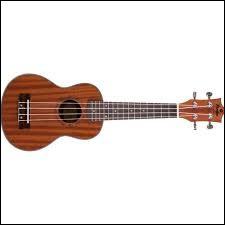 À quelle famille d'instruments appartient le ukulélé ?