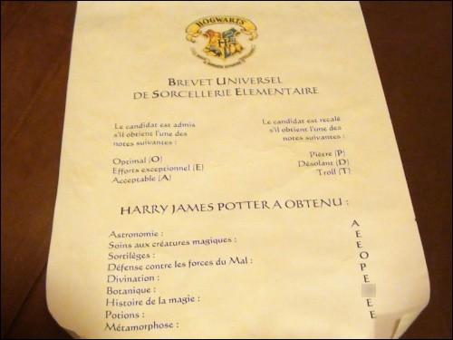 Quelles sont les notes de Harry à l'examen de B.U.S.E. pour l'histoire de la magie ?