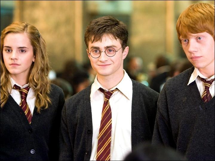 Pourquoi Harry, Ron et Hermione se sentent-ils coupables quand ils choisissent les matières de leur 6e année ?