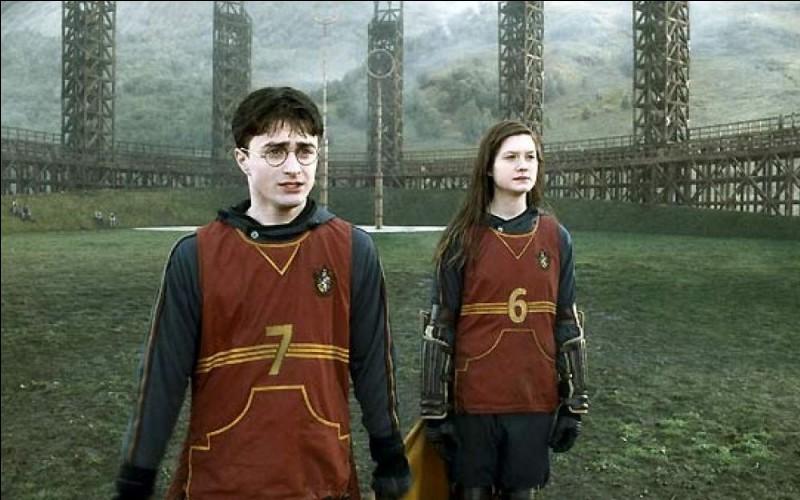 Après le cours de potions où Harry gagne le Felix Felicis, il y a un match de quidditch. Qui commente ?