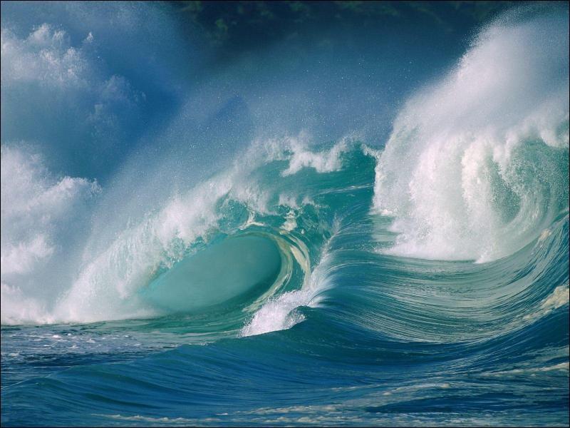 Quel pourcentage de la surface du globe les mers et les océans occupent-ils ?