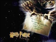 Quelle était la marque du tout premier balai magique qu'Harry verra de son existence ?
