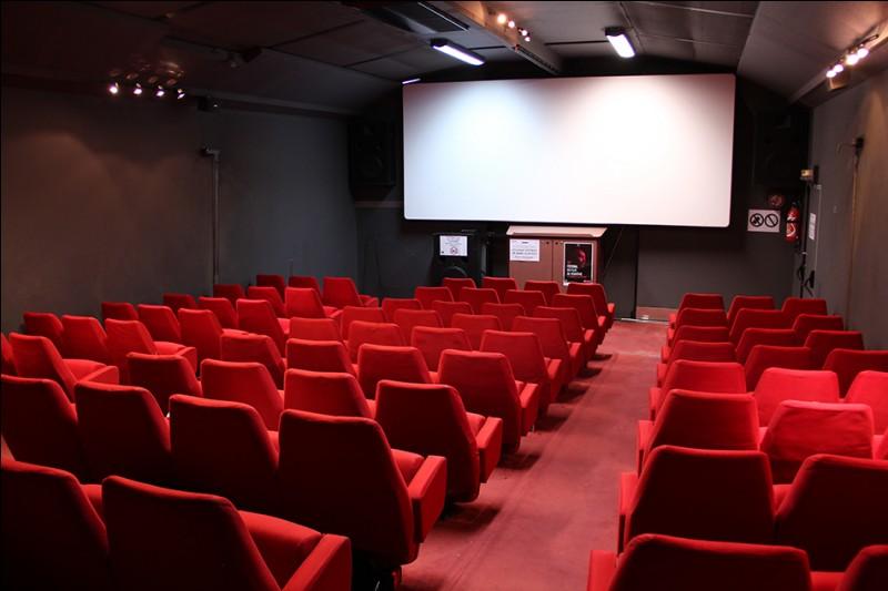 Si vous n'aimez pas la lecture, peut-être une petite séance dans cette salle, pour regarder un bon film. Il s'agit d'une...