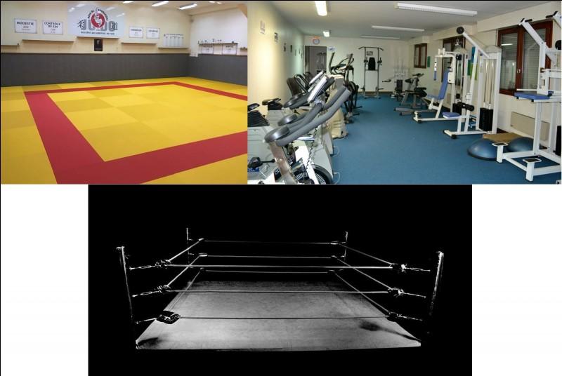 Vous êtes adeptes des pratiques sportives ? Dans cette partie du bunker, on trouve un dojo, une salle de musculation et un ring. C'est une salle de...