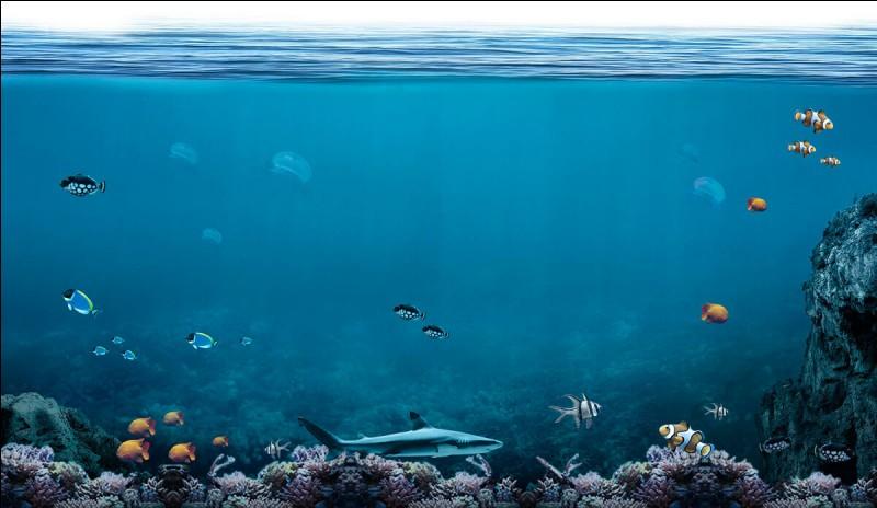 Qui est le dieu des océans ?