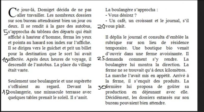"""Enfin, Répondez aux questions sur ce texte.À qui le pronom """"il"""" (l.24) fait-il référence ?"""