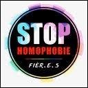 L'homophobie c'est :