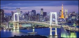 Celle capitale tentaculaire possède l'aire urbaine la plus peuplée du monde.