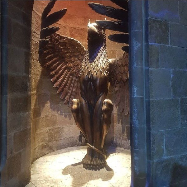 Que dit McGonagall pour que Harry aille voir Dumbledore ? (pour faire monter les escaliers)