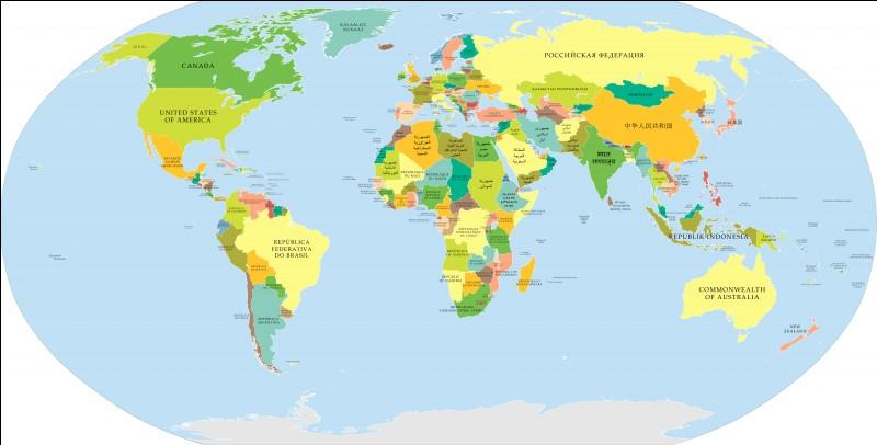De quel pays le colley est-il originaire ?