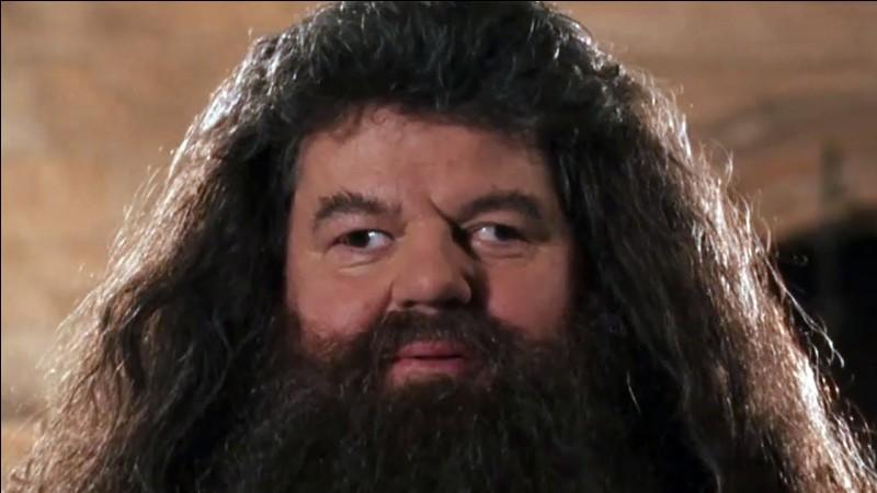 Quel acteur joue Rebeus Hagrid ?