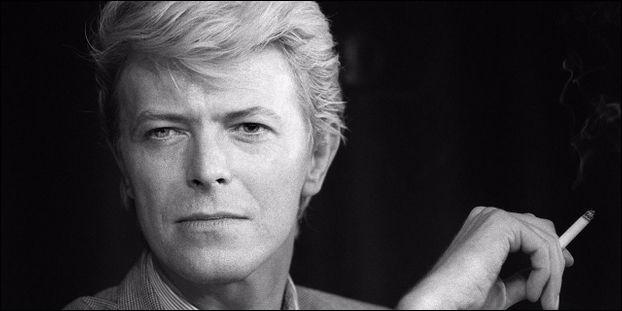 À quoi et à qui fait référence le nom de Bowie ?