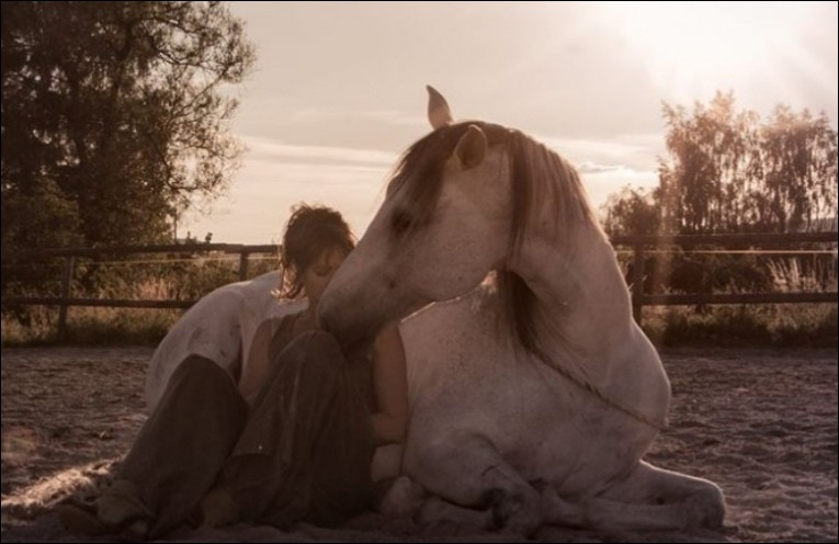 Environ combien de temps faut-il pour créer un lien avec votre cheval/poney ?