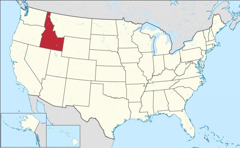 Capitale : BoiseHabitants : 1 567 582À Voir : Nez Perce National Historical ParkPatrie de Lana TurnerQuel est cet État ?