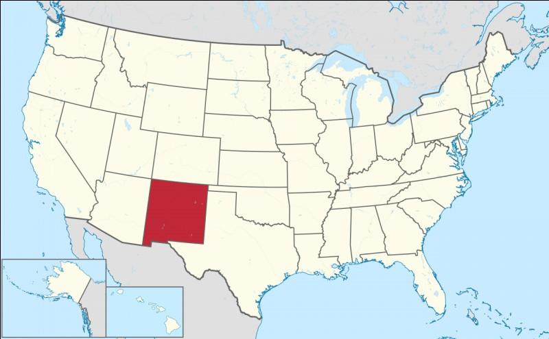 Capitale : Santa FeHabitants : 2 059 179À Voir : Bandelier National MonumentPatrie de Demi Moore Quel est cet État ?