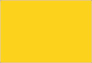 """Ici, tout le monde voit jaune, gilet ou pas. Mais d'où lui vient ce nom """"d'orpin de Perse"""" ?"""