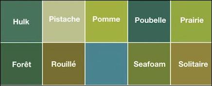Quel est ce vert au nom bizarre ? C'est le vert ... (Complétez !)