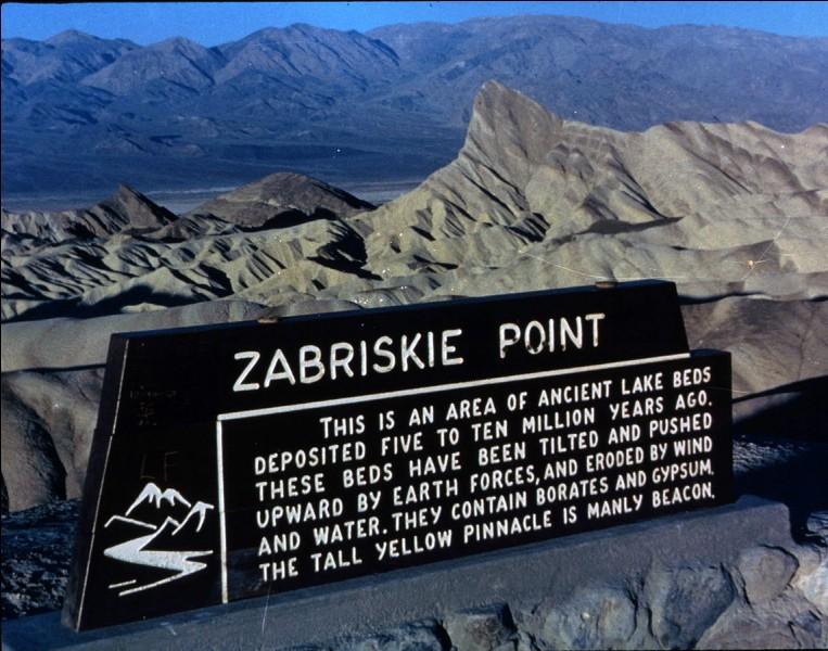 """""""Zabriskie Point"""" est un film mis en scène par Michelangelo Antotioni."""