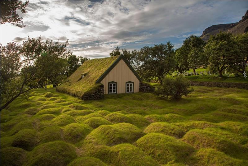 « Hofskirkja » est l'une des 6 églises encore en activité sur cette île : on l'a édifiée entre la montagne et la mer. La technique est unique : les murs sont faits de pierres assemblées et de tourbe, et le toit est construit à l'aide de dalles de pierre recouvertes de gazon.Où trouve-t-on la surprenante église de Hof, construite en 1884 et dédiée à Saint-Clément ?