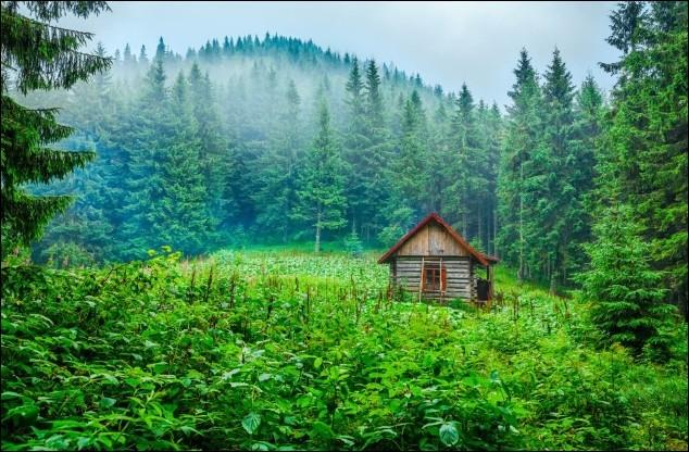 Dans ce pays d'Europe de l'Est, il existe de nombreuses forêts où construire sa maison avec l'intention d'être loin de la civilisation, est un projet facilement réalisable. Dans les Carpates, se cache aussi ce joli petit paradis pour les randonneurs. Cette photo a été prise par le Hongrois Fesus Robert.Dans quel pays se situe ce mignon petit campement ?