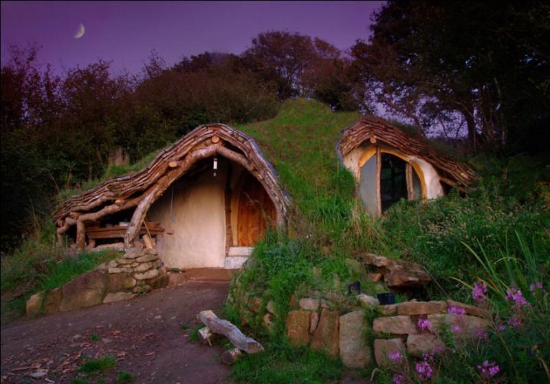 Les habitants de ce village forment une communauté qui a délibérément choisi de se retirer de notre monde moderne. Au début, les maisons peu visibles et camouflées par la végétation ont gardé leur secret. Chaque maison est un endroit surréaliste : celle-ci ressemble à la maison du Hobbit. Dans quel pays peut-on trouver cet éco-village de Tir Y Gafel ?