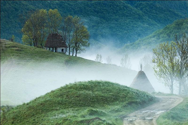 N'est-elle pas un peu étrange cette maison traditionnelle, construite de bois avec un toit de paille ? En tout cas, elle est encore habitée : on la trouve dans Tara Motilor, montagnes d'Apuseni, en Transylvanie. Pourtant, elle représente l'architecture typique de cette zone. C'est qu'en fait, une véritable civilisation du bois s'y est développée : où faut-il aller pour espérer voir cette maison ?